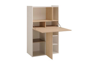 Компьютерный стол №149
